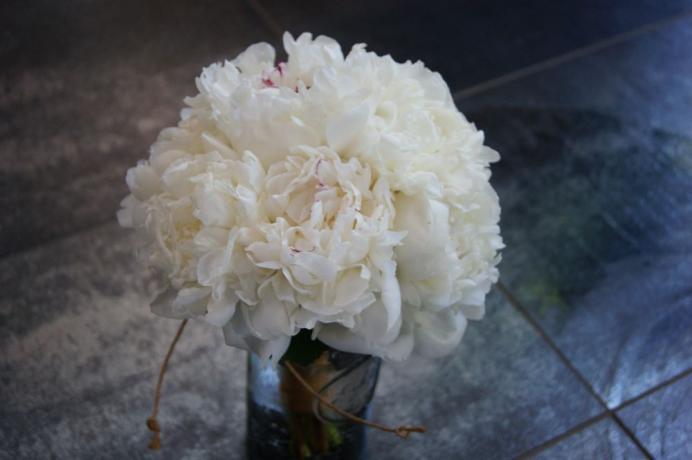Bouquet de mariée N° 16