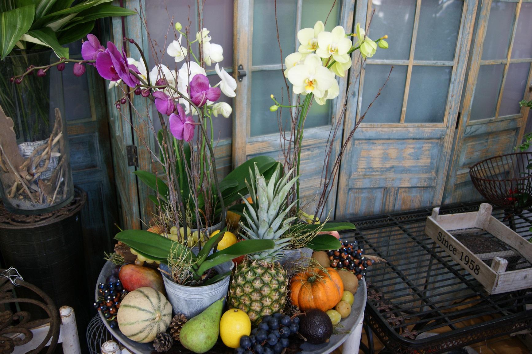 Plateau d'orchidées décoré avec des fruits N°7