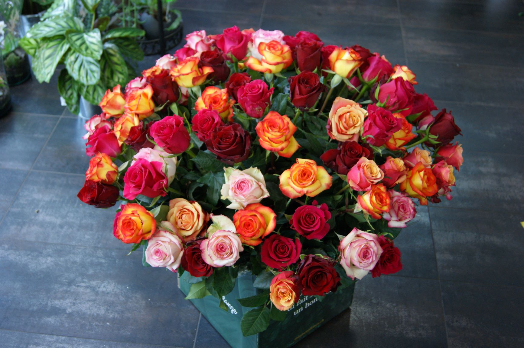 Bouquet de 100 roses N° 7