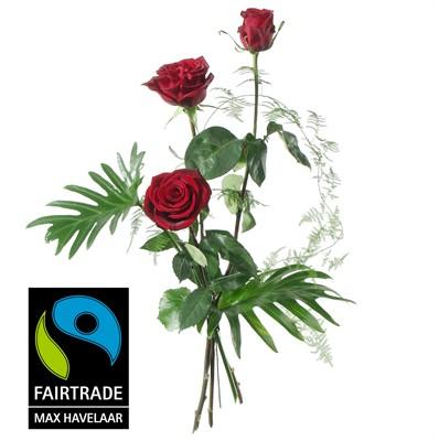 3 Roses rouges avec verdure N° 3