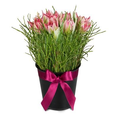 Arrangement de tulipes N° 10