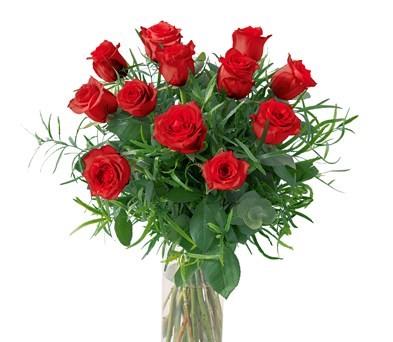 12 Roses rouges tête moyenne N° 5