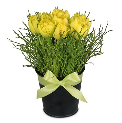 Arrangement de tulipes N° 5