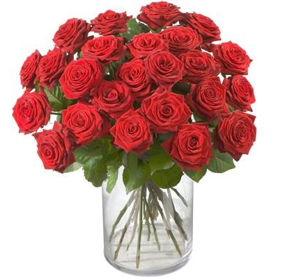 24 Roses rouges  N°7