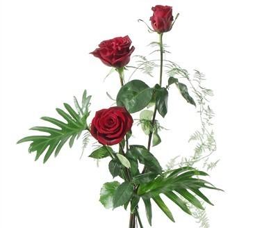 Roses rouges avec verdures N° 1