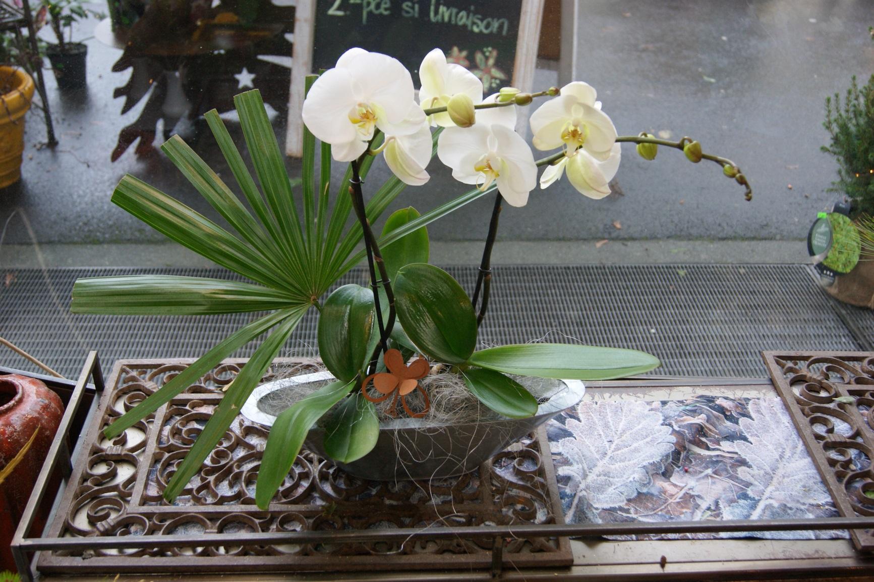 Orchidée blanche décorée avec cache-pot métal   N° 8