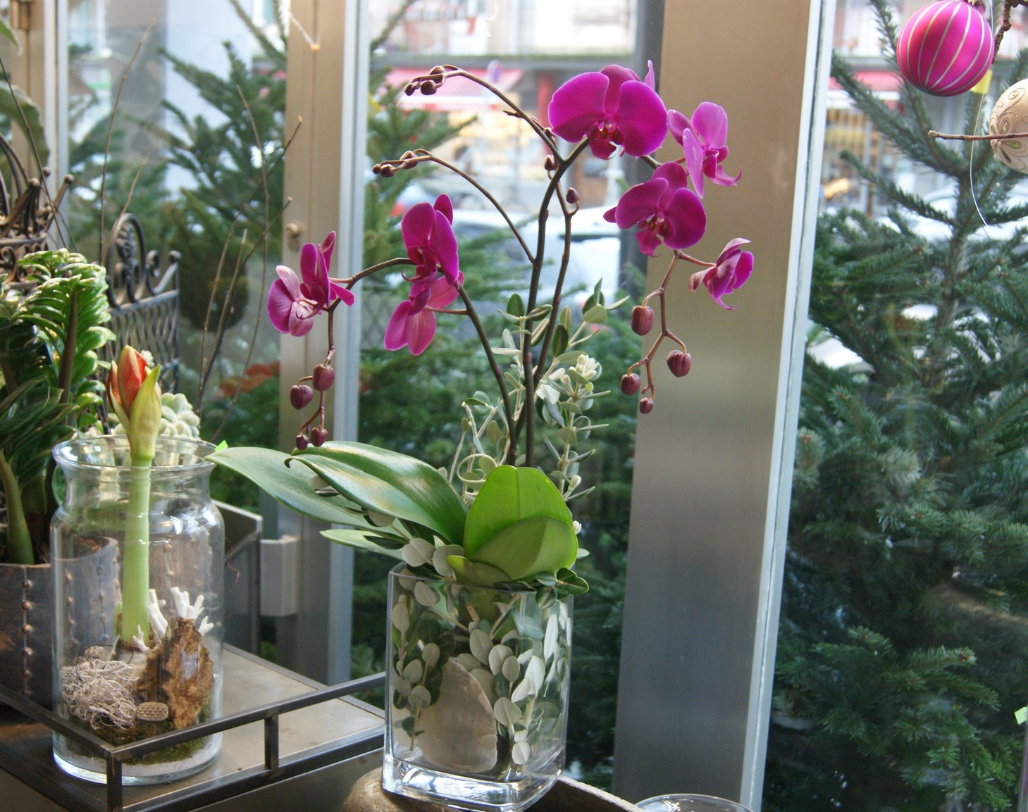 Orchidée fuchsia avec vase N° 3