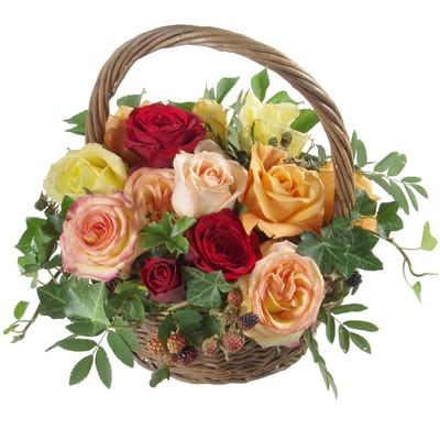 Corbeilles de roses mélanges N° 14